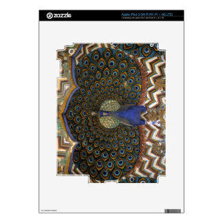 Architectural detail of Peacock Gate iPad 3 Skin