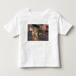 Architecture on the streets of San Miguel de Toddler T-shirt