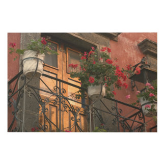Architecture on the streets of San Miguel de Wood Canvas