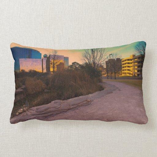 Architecture Throw Pillow