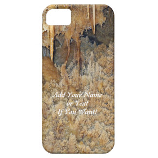 Archway of Cavern Flowers iPhone 5 Cases