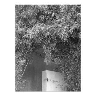Arco de bambú por las pimientas de Leslie Arte Fotográfico