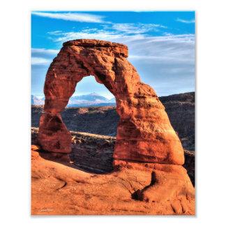 Arco delicado cojinete