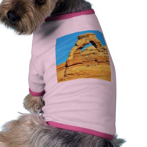 Arco delicado en el parque nacional de los arcos camisa de perro