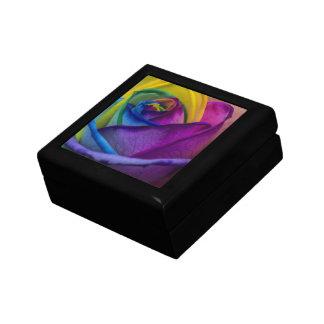 Arco iris abstracto subió caja de regalo