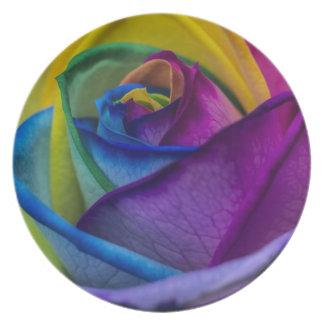 Arco iris abstracto subió platos