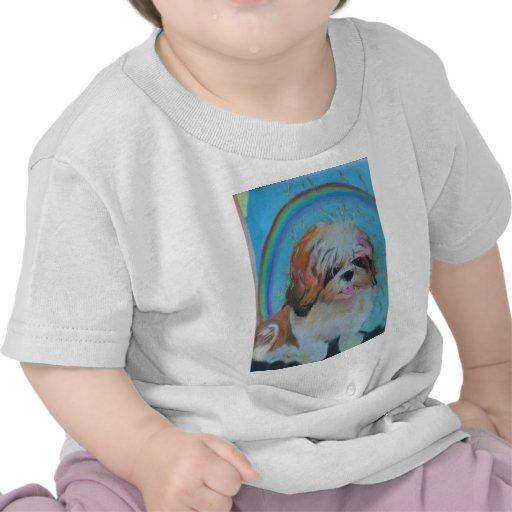 Arco iris alrededor de su cabeza camiseta