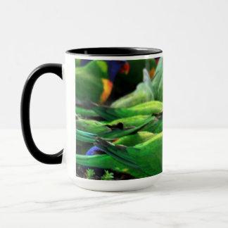 Arco iris australiano Lorikeets Taza