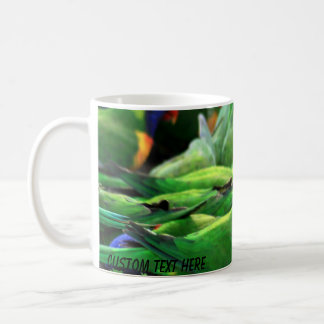 Arco iris australiano Lorikeets Taza De Café
