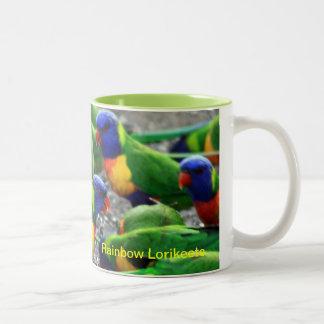 Arco iris australiano Lorikeets Taza De Café De Dos Colores