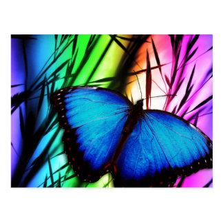 Arco iris azul de la mariposa postal