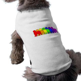 Arco iris Bernese Prenda Mascota