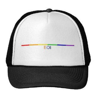 arco iris Boi Gorros Bordados