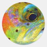 Arco iris celestial pegatinas redondas
