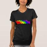 Arco iris cocker spaniel camiseta