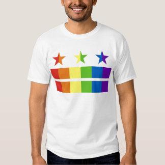 Arco iris de la bandera de DC Poleras