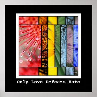 Arco iris de la naturaleza del odio de las póster