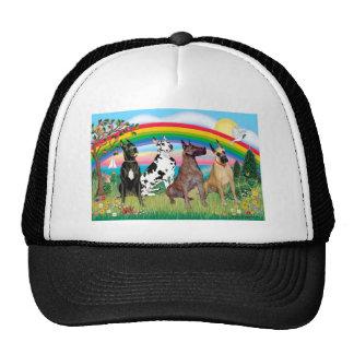 Arco iris de los grandes daneses (cuatro) - brilla gorras