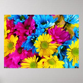 Arco iris de margaritas póster