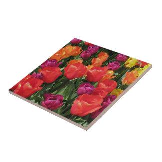 Arco iris de tulipanes azulejo ceramica