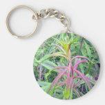 Arco iris del llavero de los colores