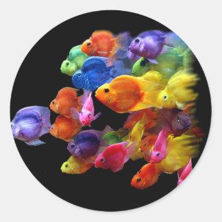 Arco iris del pez papagayo pegatina redonda