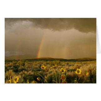 Arco iris del valle del San Luis Tarjeta De Felicitación