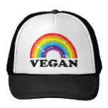 Arco iris del vegano gorras