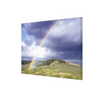 Arco iris dinámico impresion en lona