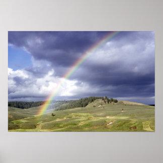 Arco iris dinámico póster