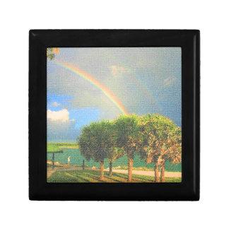arco iris doble sobre los árboles acolchados
