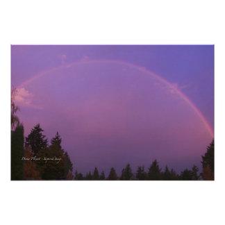 Arco iris en el amanecer cojinete