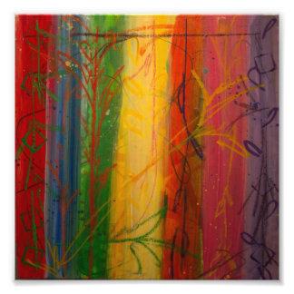Arco iris Forrest de Bryce y de Maria Fotografías