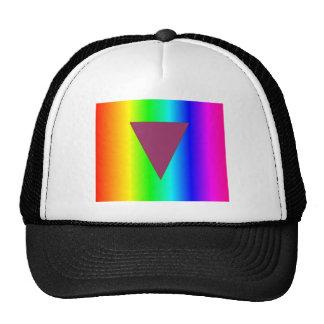 Arco iris heterosexual gorros
