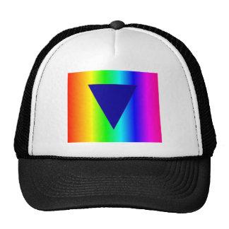 Arco iris heterosexual gorras