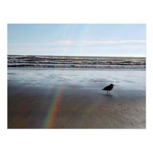 Arco iris misterioso tarjetas postales