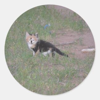 Arco iris. Nuestro gatito único del calicó Pegatina Redonda