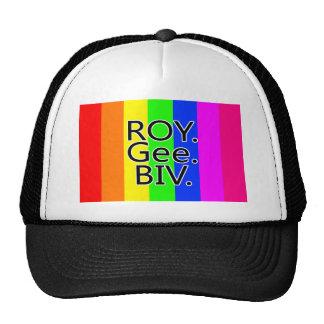 Arco iris RoyGeeBiv - LGBT Gorras De Camionero