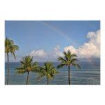 Arco iris sobre el océano con las palmeras fotografias