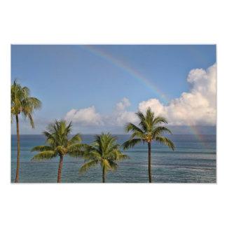 Arco iris sobre el océano con las palmeras fotografía