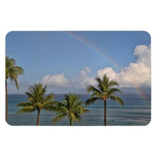 Arco iris sobre el océano con las palmeras iman de vinilo