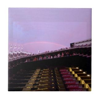 arco iris sobre lev de la sección 126 del azulejo cuadrado pequeño