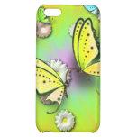 Arco iris Swallowtails y caja de la mota de las ma