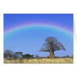 Arco iris y árbol africano del baobab, Adansonia Tarjeta De Felicitación