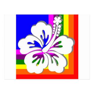 Arco iris y diseño blanco del hibisco tarjetas postales