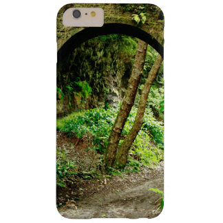 Arco viejo funda para iPhone 6 plus barely there