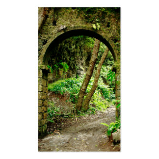 Arco viejo tarjetas de visita