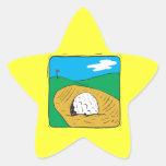Arcón Calcomania Forma De Estrella