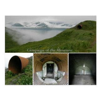 Arcón subterráneo de WWII en el fuerte Swatzka Tarjeta Postal