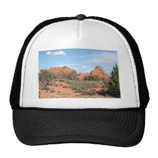 Arcos parque nacional, Utah, los E.E.U.U. 9 Gorro De Camionero